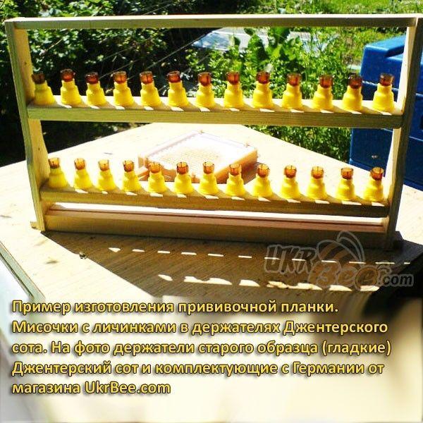 Желтые держатели Джентер гладкие (рис 10)