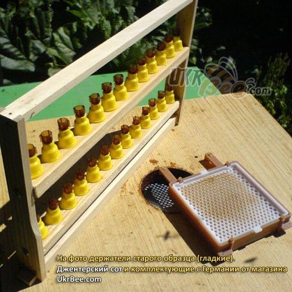 Желтые держатели Джентер гладкие (рис 11)