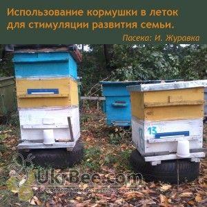 Кормушка (поилка) для пчел вакуумная в леток улья - 0,5л. (рис 4)