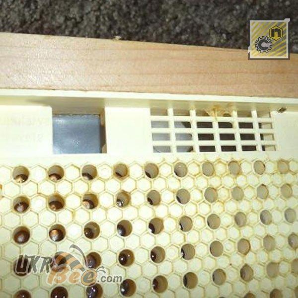 Основная кассета системы Никот, рис. 8
