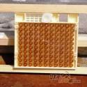 """Система Никот набор """"Nicot-30"""" для выведения маток в пчеловодстве (рис 12)"""