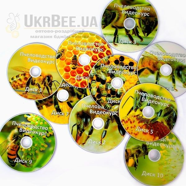 Курс видеопасека 10 DVD, рис.