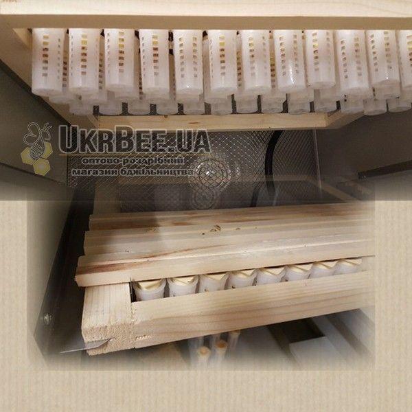 Инкубаторная клеточка-бигуди Никот CNE4 (рис 6)