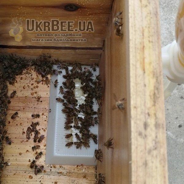 Вакуумная кормушка/поилка для пчел наружная (рис 4)