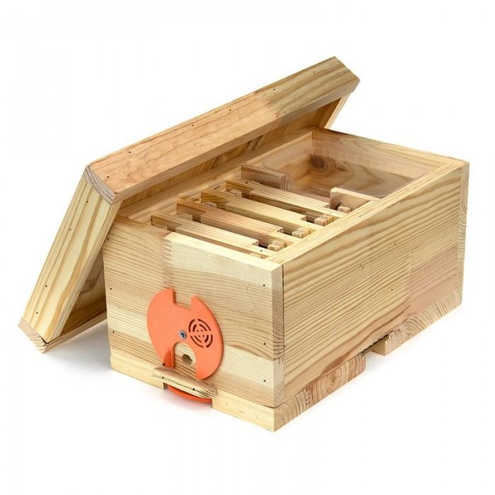 Нуклеус деревянный с рамками, рис. 1