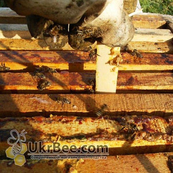 Варотом (полоски от Варроатоза у пчел)