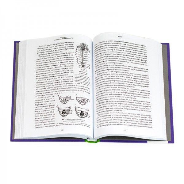 Анатомия и физиология медоносных пчел, Г. Таранов (рис. 3)