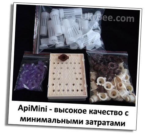 ApiMini - матки высокого качества с малыми финансовыми затратами