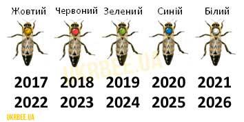 Колір мітки на бджоломатках має відповідати її року народження