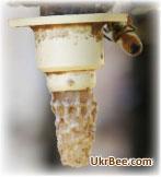 Нікот - сучасна система для виведення бджолиних маток