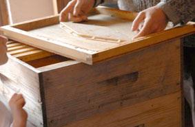 Бджоловидаляч Ромбус при високій ефективності досить простий в монтажу та використовуванні