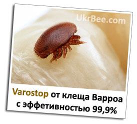 Варостоп действует на клеща Варроа у пчел с эффективностью до 99,9%
