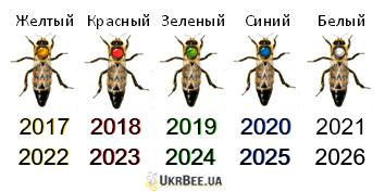 Цвета метки на пчелиной матке означаю год ее рождения