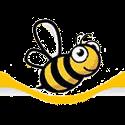 JZ-BZ, USA